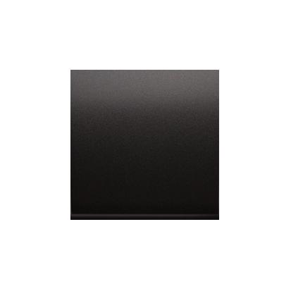 Kontakt Simon 54 Premium Antracit Jednotná klávesa pro vypínače/Tlačítek, DKW1/48