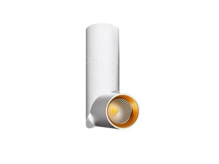 Svítidlo stropní spotlight Santos bílá Azzardo LM-9013